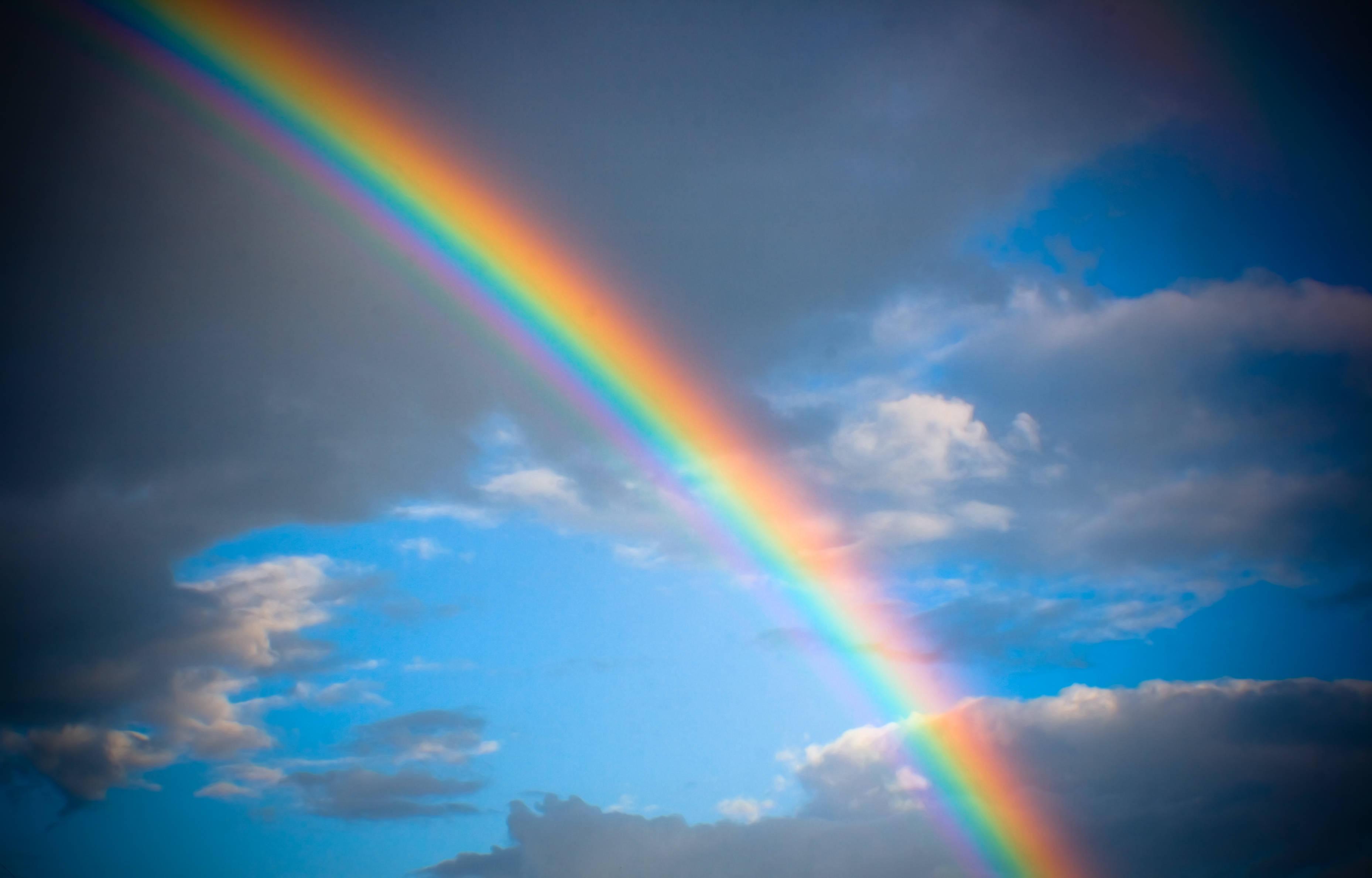 [Immagine: nature-rain-bow.jpg]