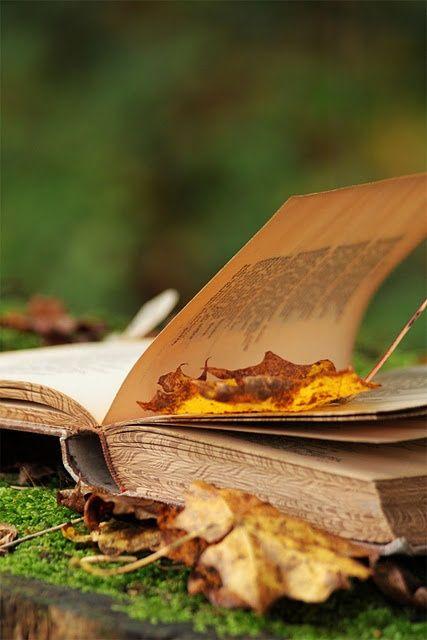 books 5
